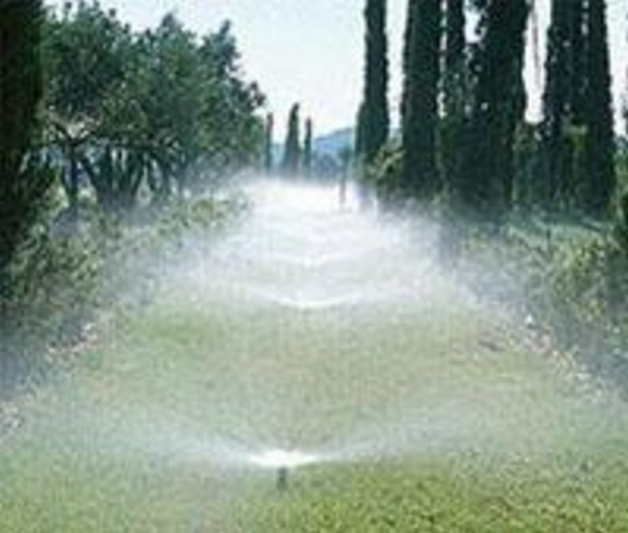 Наверное, каждый обитатель загородного дома хочет видеть вокруг себя идеальные газоны и роскошные цветники.